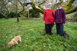 Sisters Noreen Lyons and Anne Mills gather apples at An Gairdin Ecology Center in County Galway, Ireland.